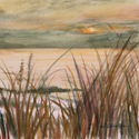 More Dune Grass, painting by Amy Rice
