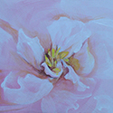 Peony, acrylic by Chris O'Dell Ferguson