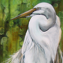 Egret, Acrylic by Chris O'Dell Ferguson
