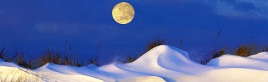 Moon Over Dune by Ned Manter