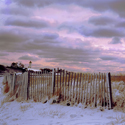 Nobska Snow Fence